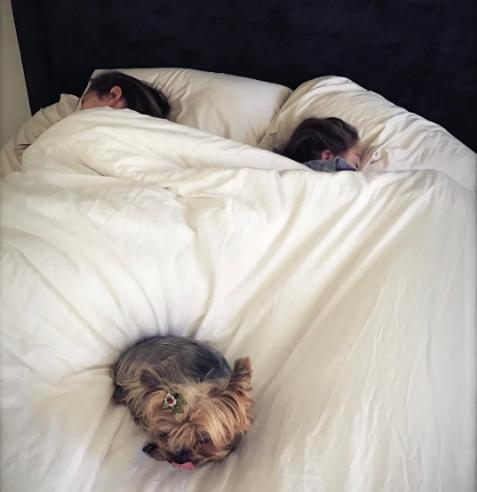 Муж Седоковой будет спать в одной постели с ее дочерями