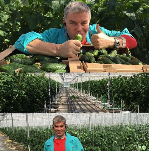 Олег Газманов меняет музыку на овощной бизнес