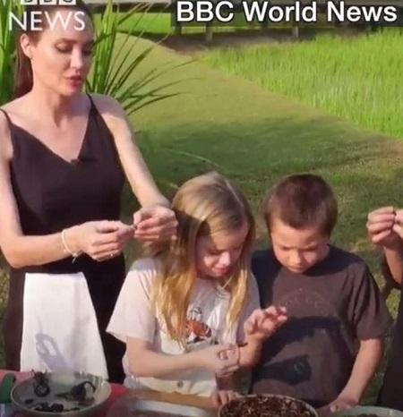 Анджелина Джоли кормит детей пауками и скорпионами